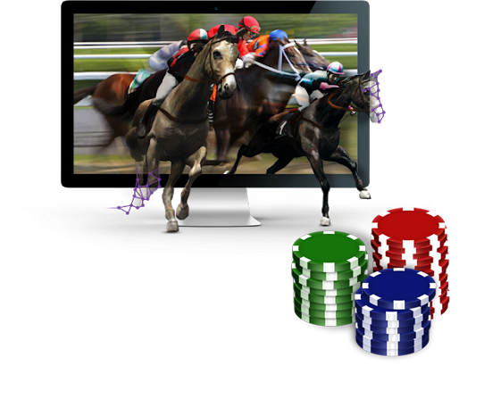 Horse Racing Point System